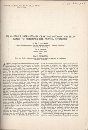 22 offprints, mimeographs, etc. on molecular biology and bacterial genetics, with two others. Monod Jacob, and Brenner, Lwoff.