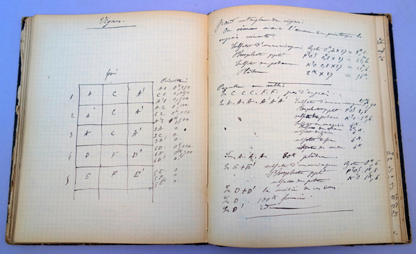Autograph manuscript notebook of field experiments, 1890-91, 1891-92, and 1892-93. 130 leaves. Jules Raulin.