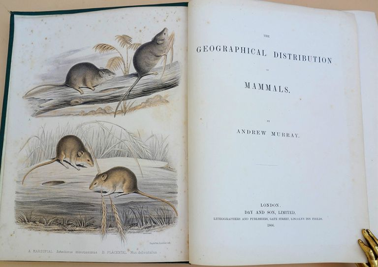The geographical distribution of mammals. Andrew Murray.