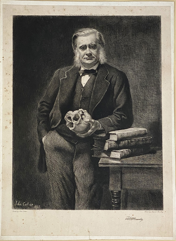 Engraved portrait by L. Flameng after the painting by John Collier. Thomas Huxley.