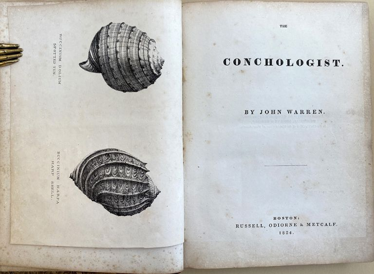 The conchologist. Inscribed copy. John Warren.