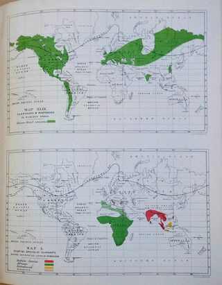 The geographical distribution of mammals.