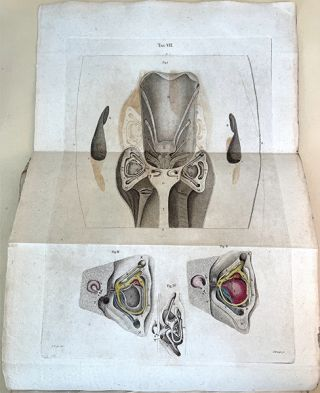 Three treatises. On the brain, the eye, and the ear.